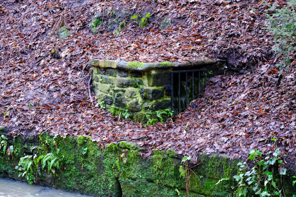 A structure built of stone bricks extends from the river bank. It is about 1.5 metres tall and 2 metres wide. It is well hidden in the fallen leaves. A metal drill blocks the entrance.